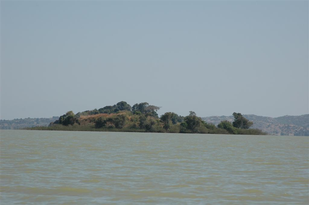 065._Church_forests_on_islands_in_Lake_Tana.JPG