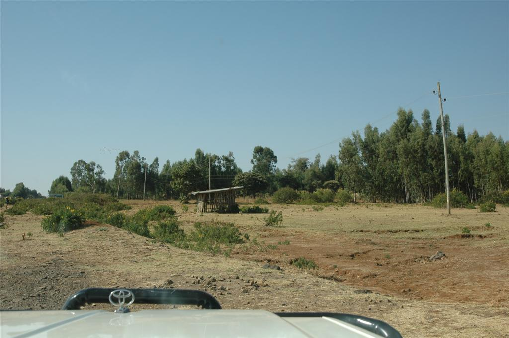 087._Offroad_to_church_forest.JPG