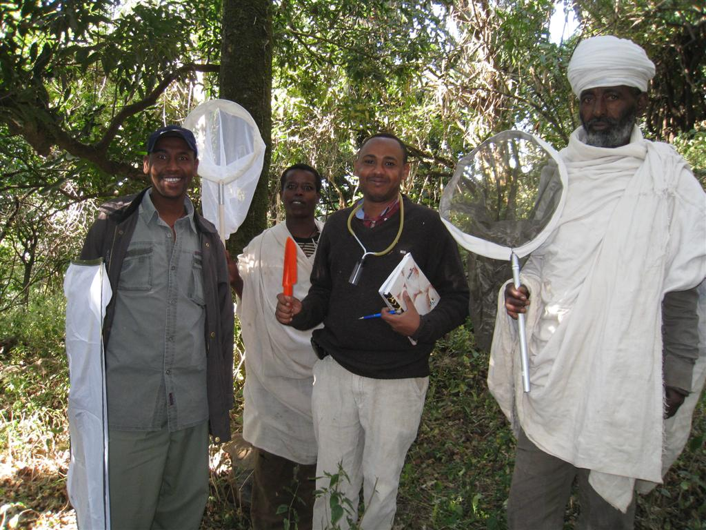 132._First_insect_survey_in_Ethiopian_church_forest.jpg