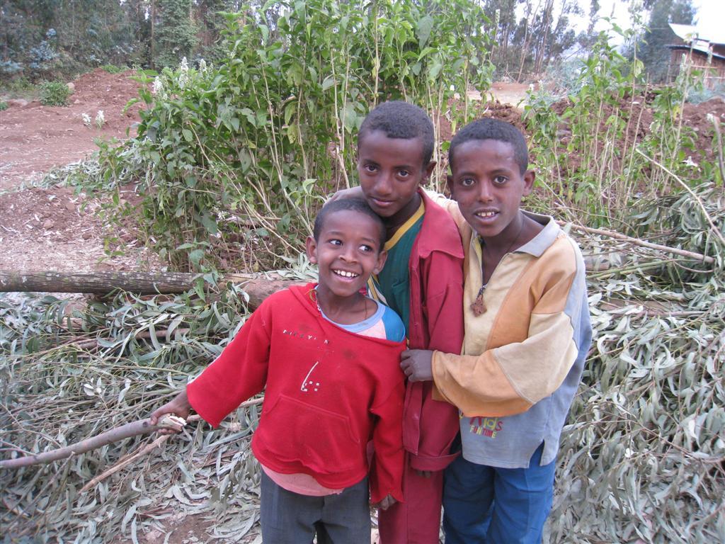 140._Village_kids_fetch_eucalyptus_for_firewood.jpg