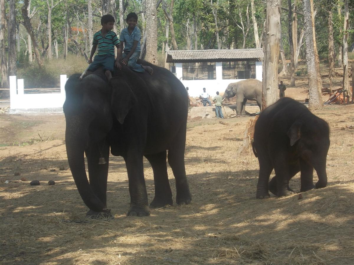 mahout-children-learning-the-first-ropes