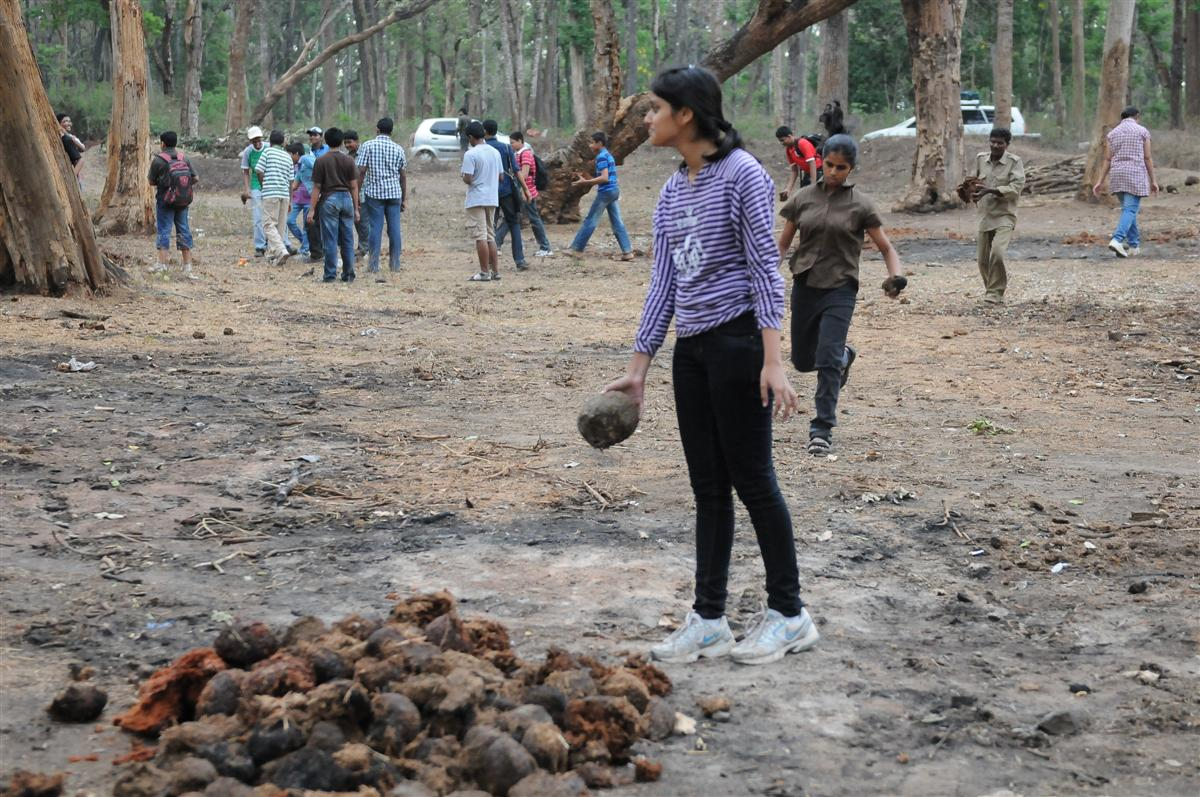 students-picking-up-elephant-dung