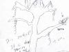 tree01-apr-2003.jpg