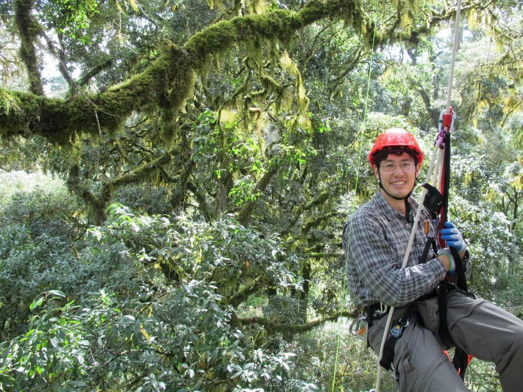 Tree Climbing Planet