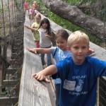 Figure 4 (right). Children using canopy walkway in Florida