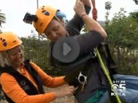 Wheelchair Bound Biologists Study Treetops Thanks To Climbing