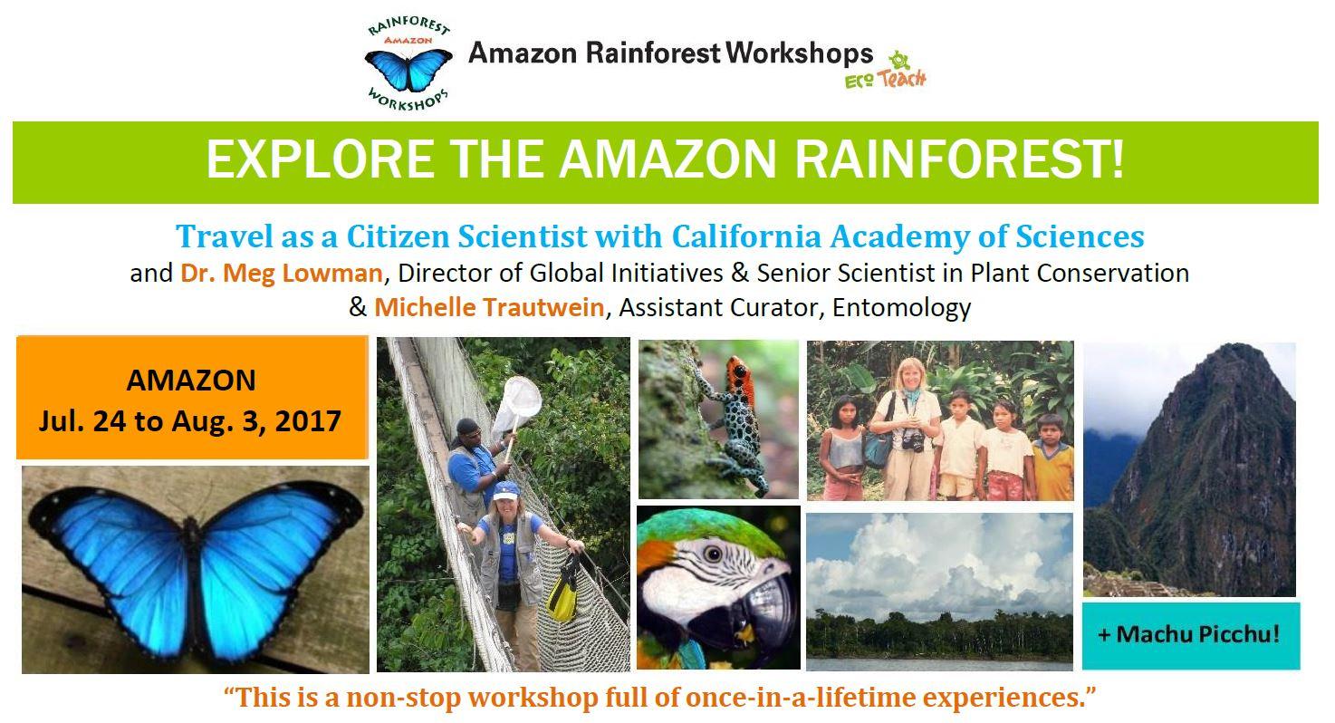 Amazon Rainforest Workshop 2016