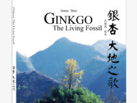 New Book on Ginkgo Trees