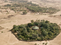 Saving Ethiopia's church forests