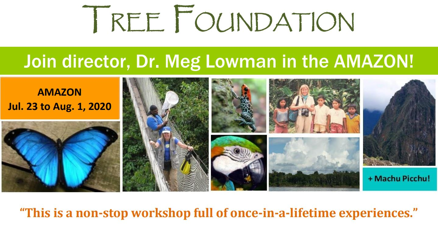 TREE Foundation - Conserving our planet's botanical